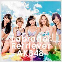 AKB48・「ラブラドールレトリバー」.jpg